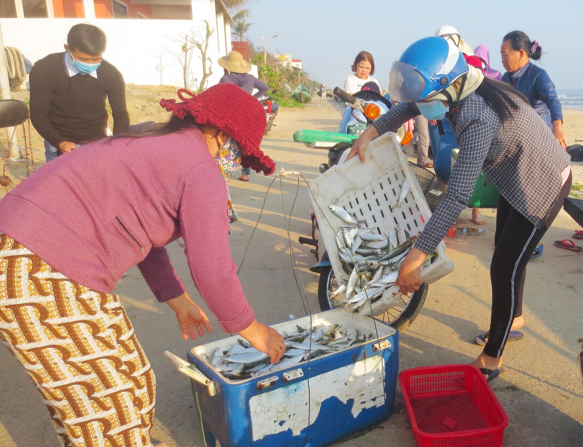 Thời tiết khá thuận lợi, giá hải sản đầu năm cũng khá cao nên ngư dân Tam Thanh rất phấn khởi. Ảnh: T.X