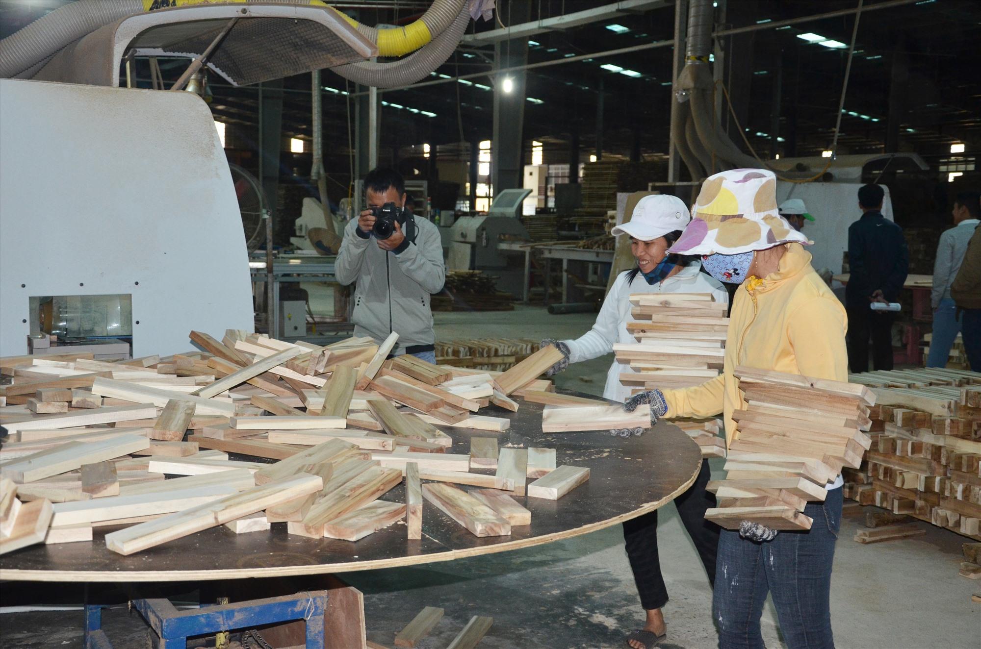 Phát triển mạnh rừng trồng gỗ lớn phục vụ chế biến là chủ trương được ngành lâm nghiệp tiếp tục quan tâm trong năm 2021. Ảnh: H.P