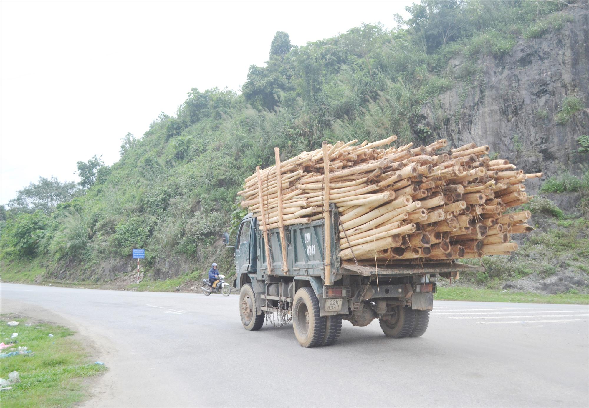 Xe tải chở keo quá kích thước thành, thùng ngang nhiên chạy trên đường Hồ Chí Minh, đoạn qua xã Cà Dy (Nam Giang). Ảnh: K.K