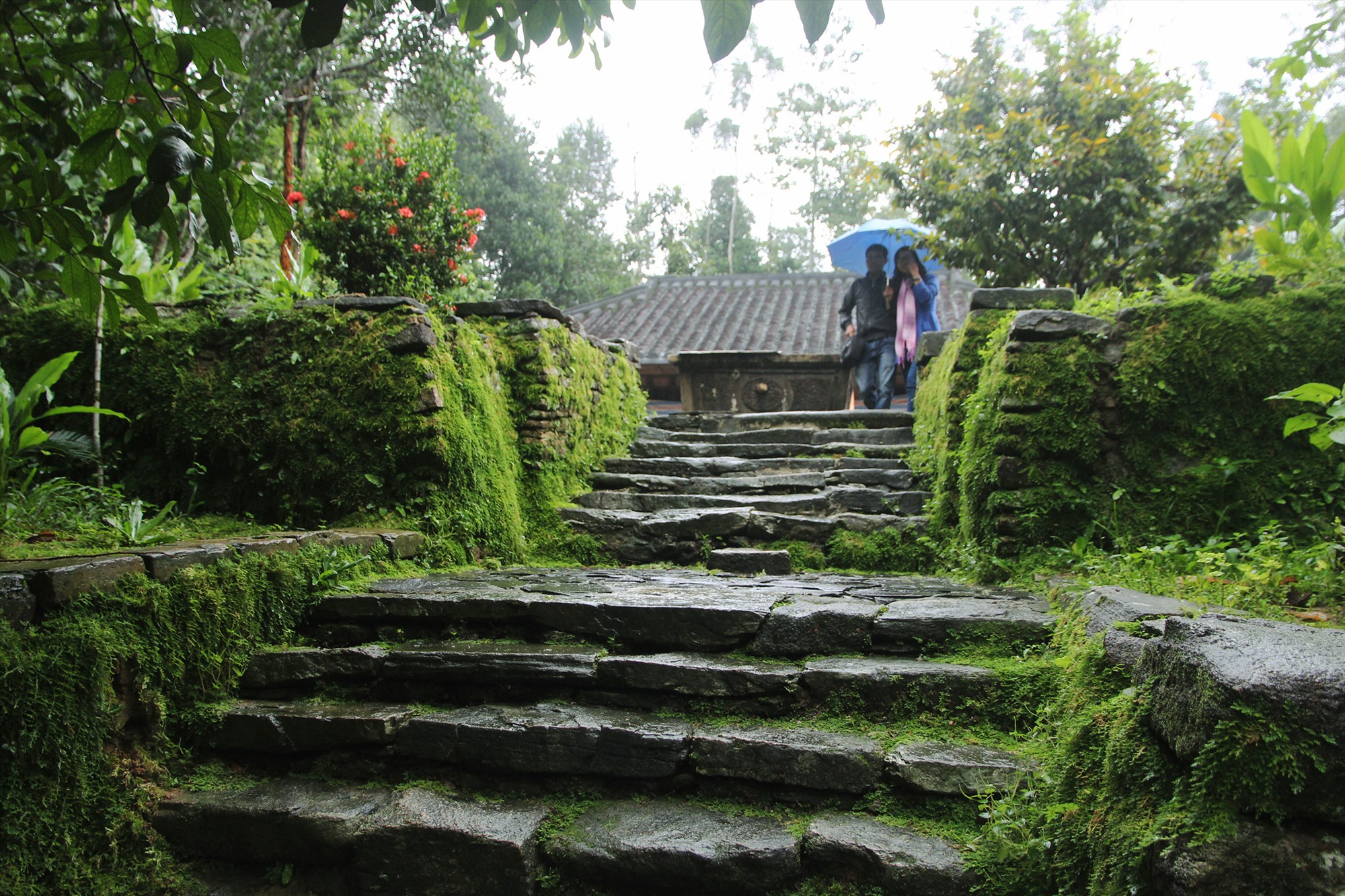 A mossy stone alley leading to an ancient house