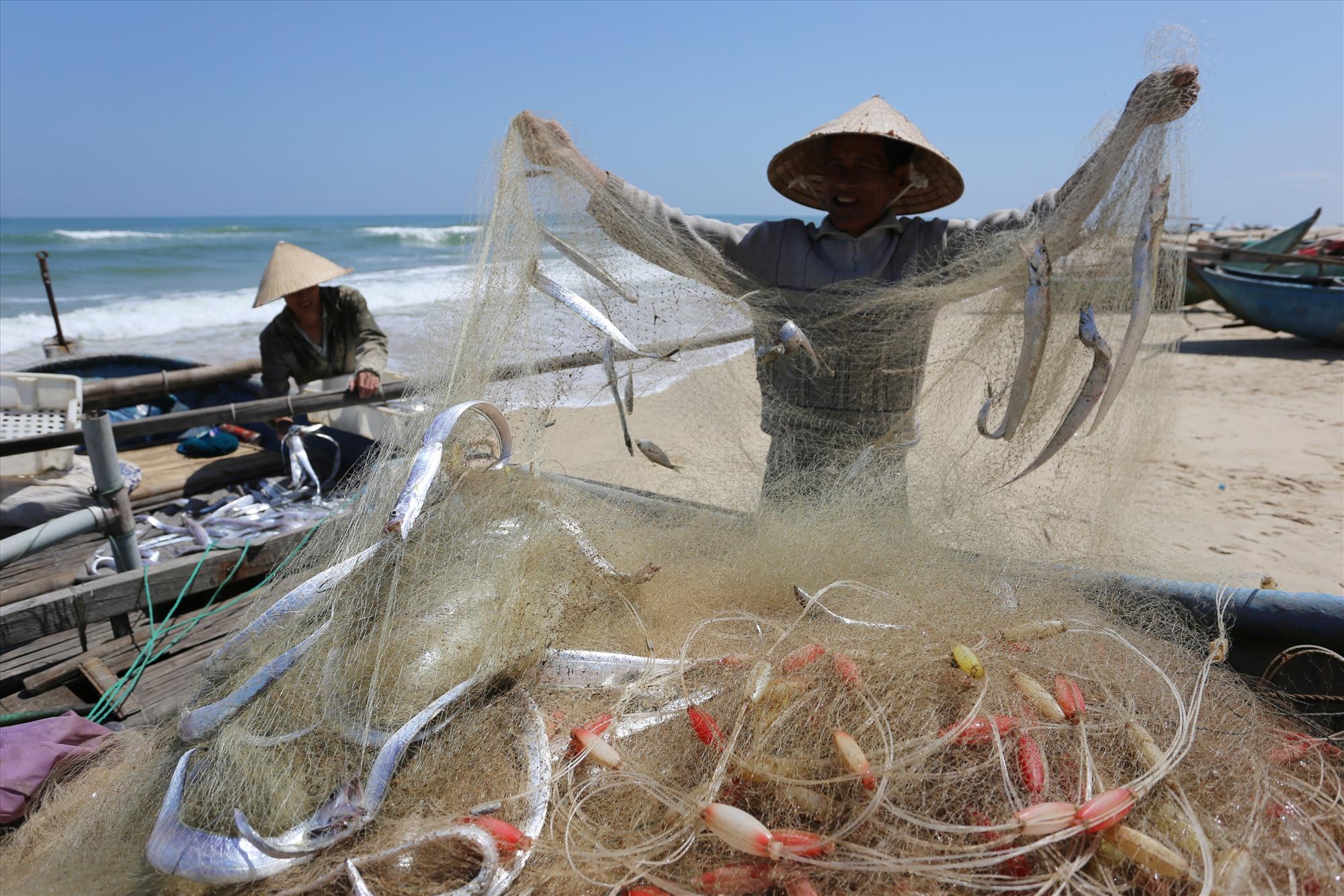 Ngư dân Nguyễn Văn Thính (66 tuổi, thôn Tỉnh Thủy) cùng con trai gỡ mẻ lưới gần 100kg cá hố