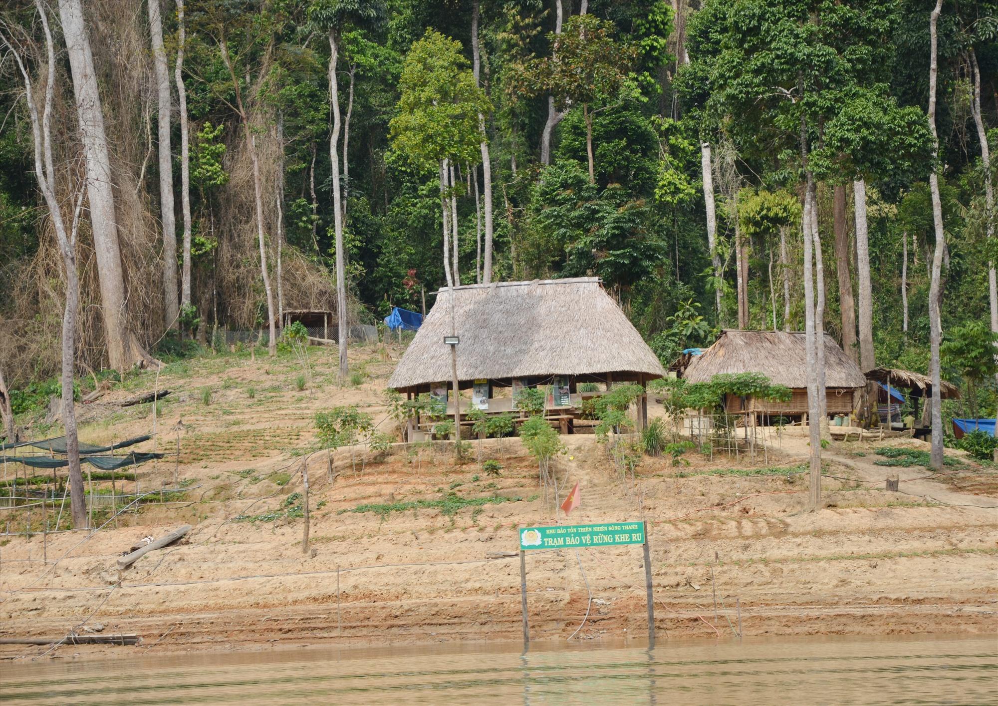 Đất rừng trong Vườn quốc gia Sông Thanh vẫn chưa được cấp bìa đỏ. Ảnh: H.P