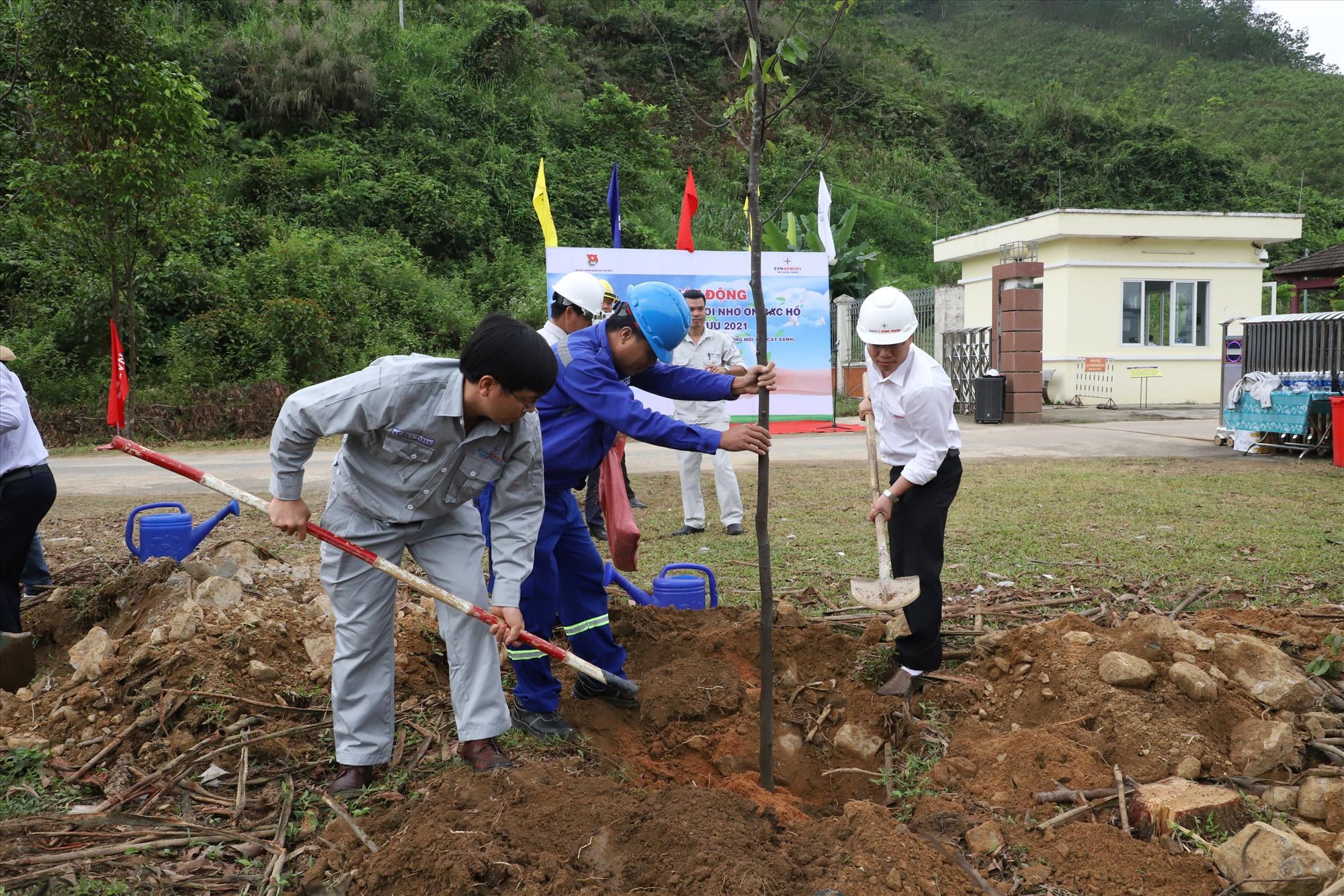 Lãnh đạo Công ty Thủy điện Sông Tranh tham gia trồng cây.