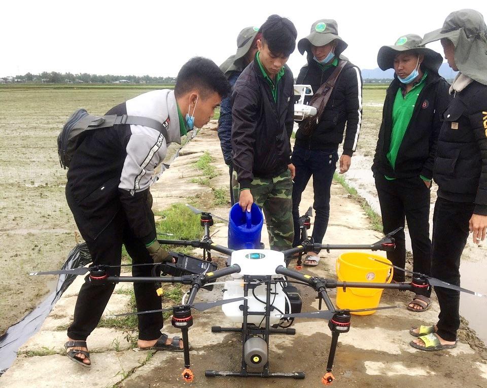 Chuẩn bị phun thuốc trên cánh đồng lúa giống ở xã Đại Phong (Đại Lộc) bằng thiết bị bay drone. Ảnh: K.K