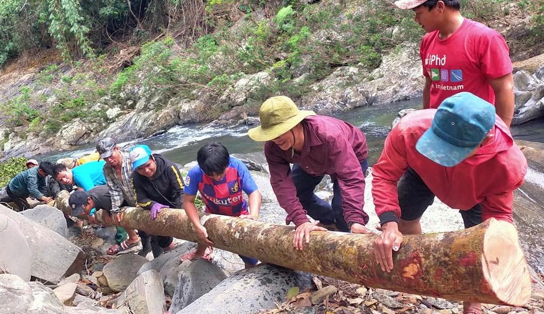 ĐVTN khiêng cây làm cầu tạm qua suối