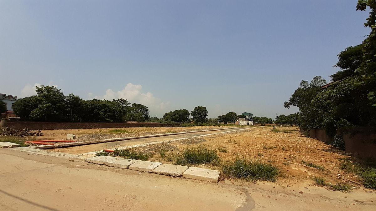 Đất nền phân lô đang là sản phẩm được mua đi, bán lại nhiều. Ảnh: Thành Nguyễn.