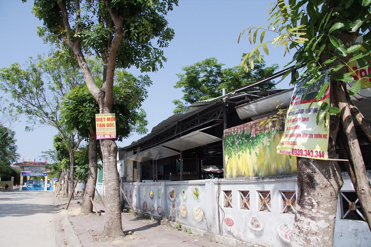 """Hàng cây xanh trước cổng vào trường THCS Nguyễn Du cũng bị quảng cáo """"rác"""" làm phiền."""