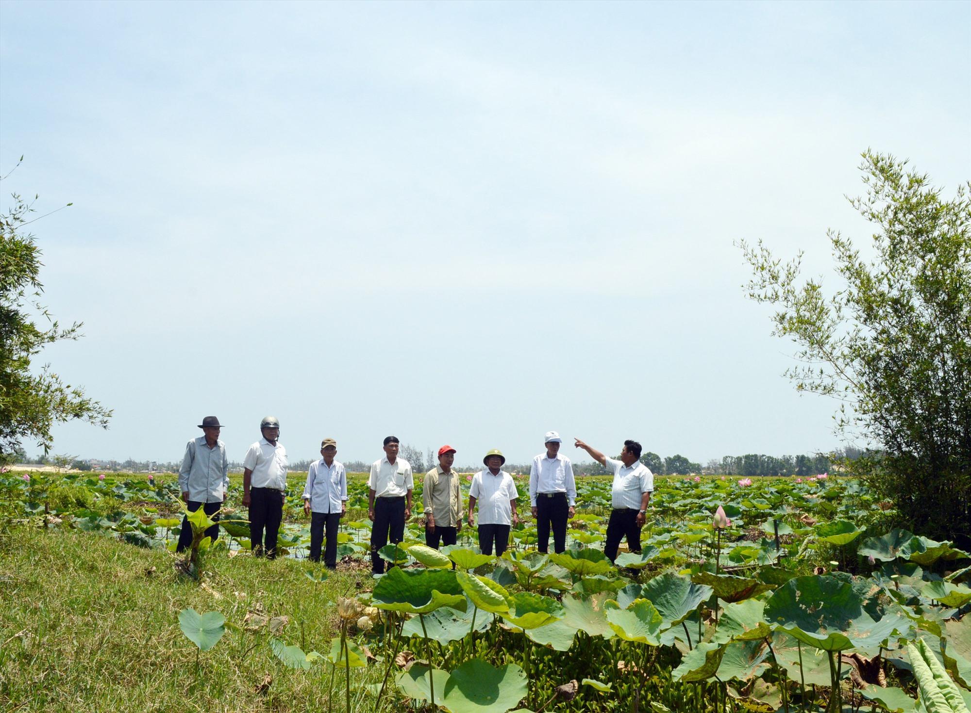 Xung quanh di tích Bàu Sen xưa kia có hàng chục hầm công sự là nơi ẩn nấp của người làm cách mạng