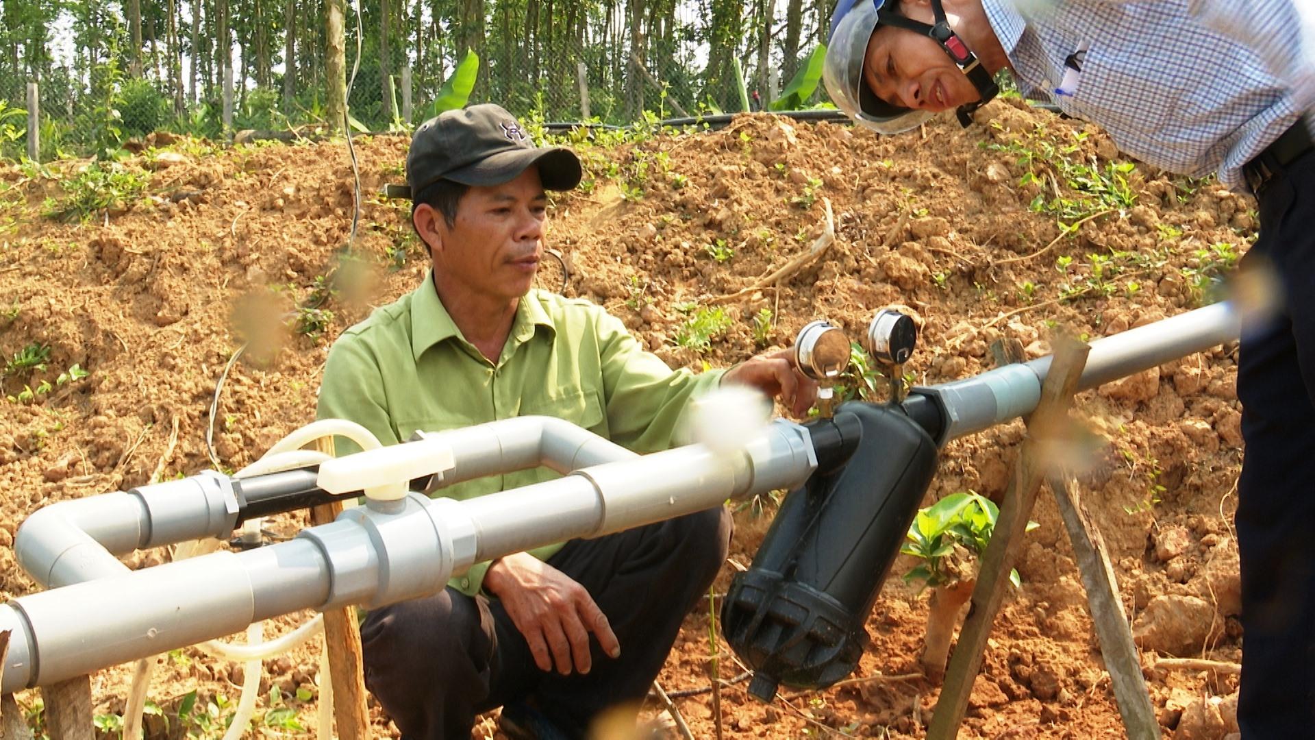 Nhờ ứng dụng công nghê tiên tiến, vườn cây của gia đình ông Sơn đem lại hiệu quả kinh tế cao. Ảnh: H.H