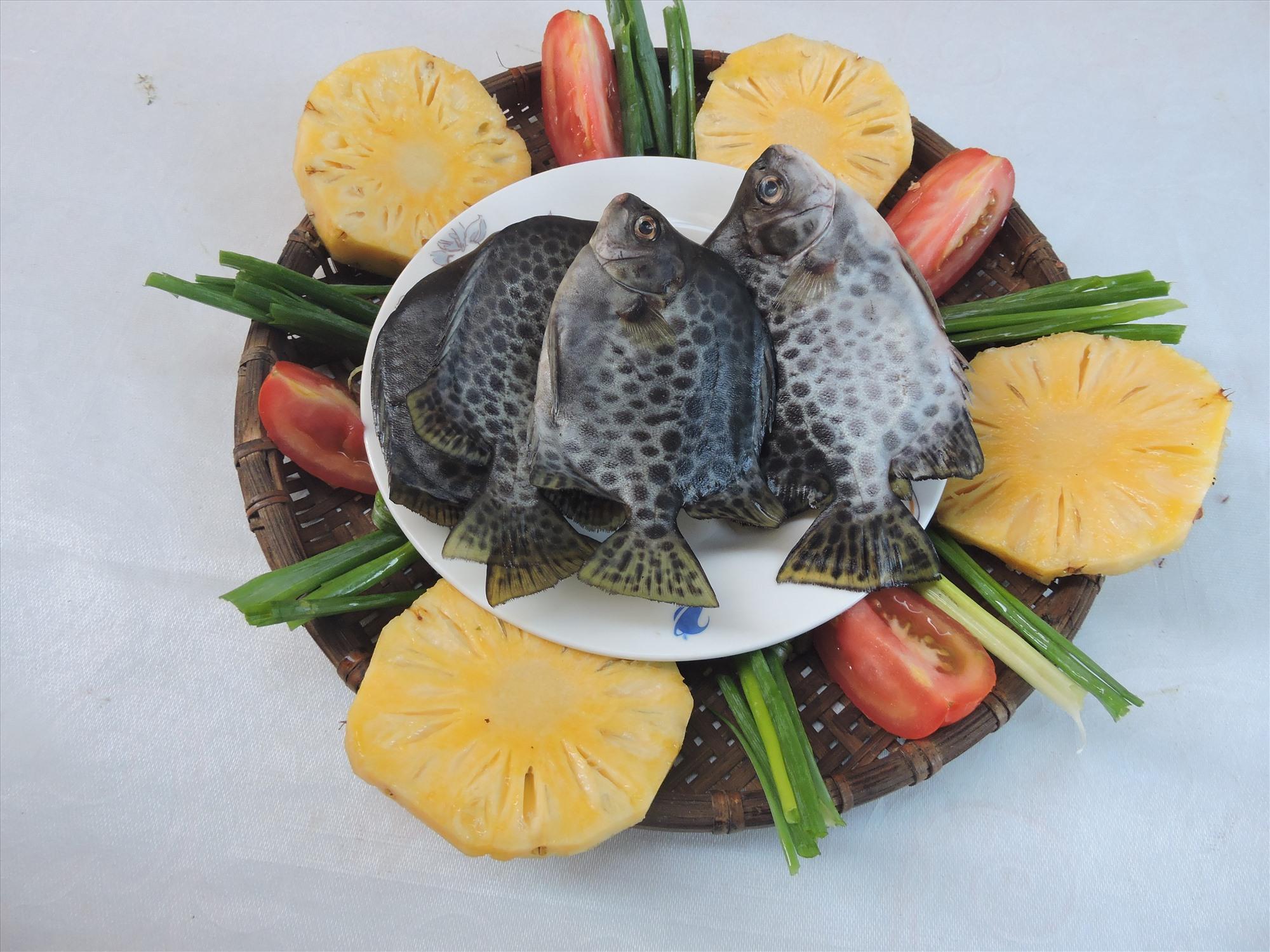 Nguyên liệu món cá nâu nấu canh chua thơm cà.