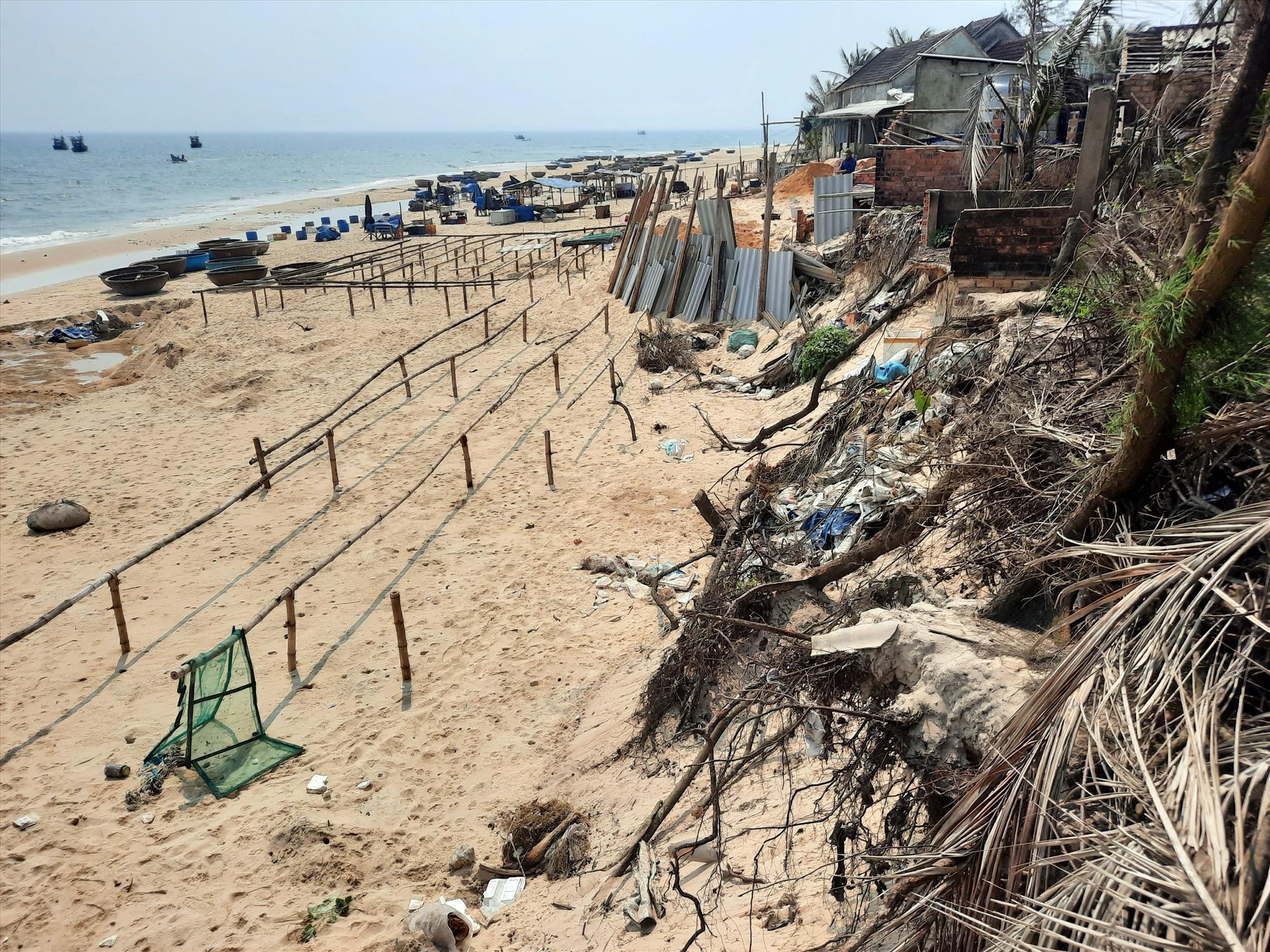 Chiều dài bờ biển bị xâm thực là hơn 1.000m và gây sạt lở vào bên trong từ 10 đến 20m so với hiện trạng trước kia.