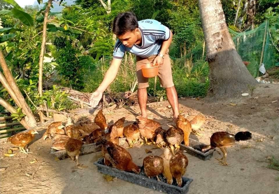 Nhiều mô hình khởi nghiệp được thanh niên Nam Giang áp dụng để làm giàu. Ảnh; LƯU HƯƠNG