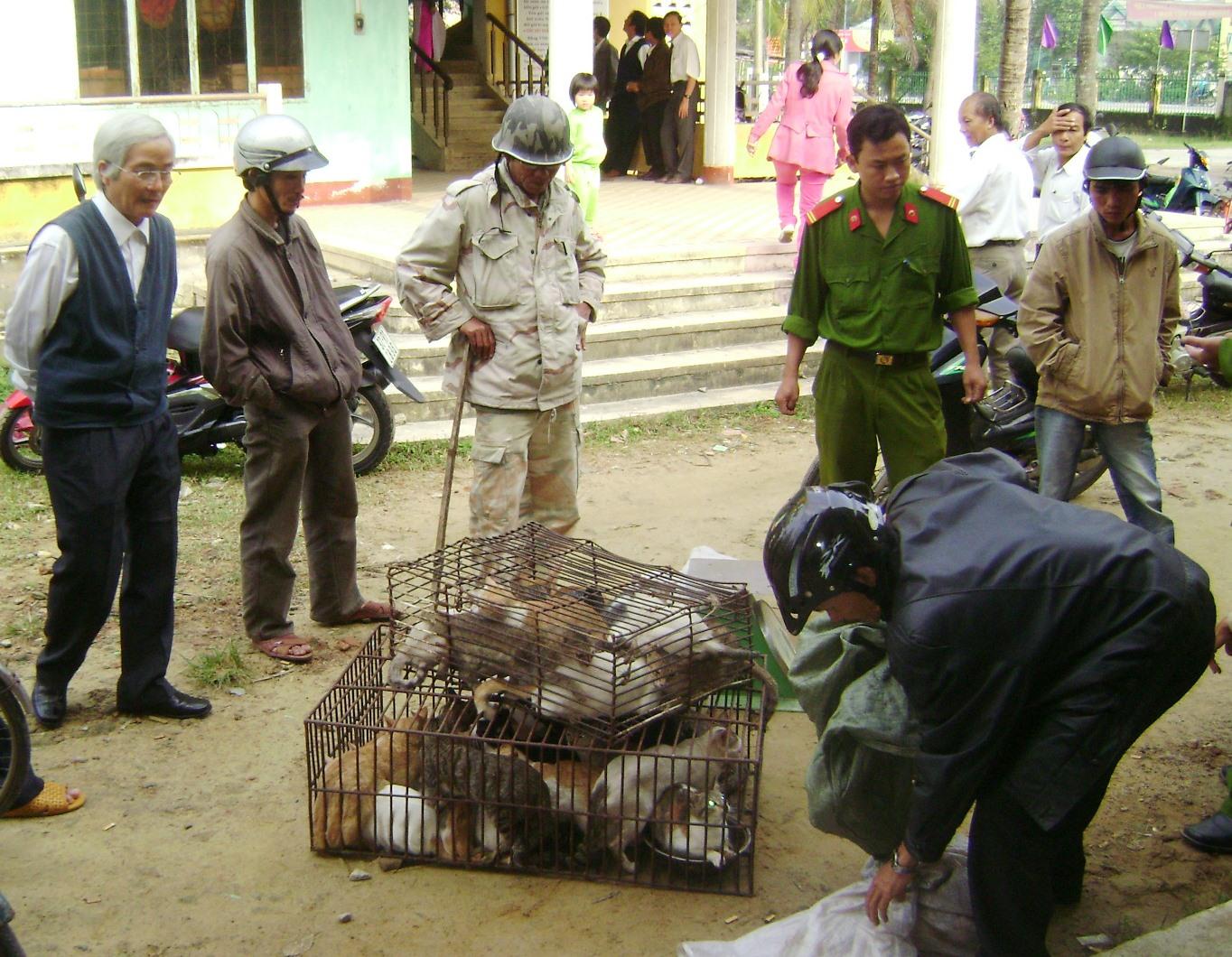 Lực lượng chức năng bắt một vụ vận chuyển động vật hoang dã trái phép. ẢNH: H.P