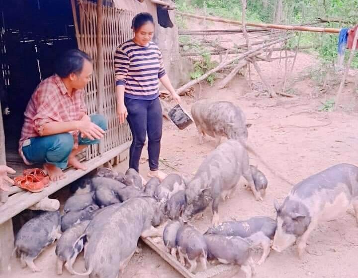 Chị Ating Thị Phương (thị trấn Prao) là gương thanh niên điển hình nuôi heo cỏ địa phương, cùng dịch vụ chăm sóc thú y. Ảnh: KK