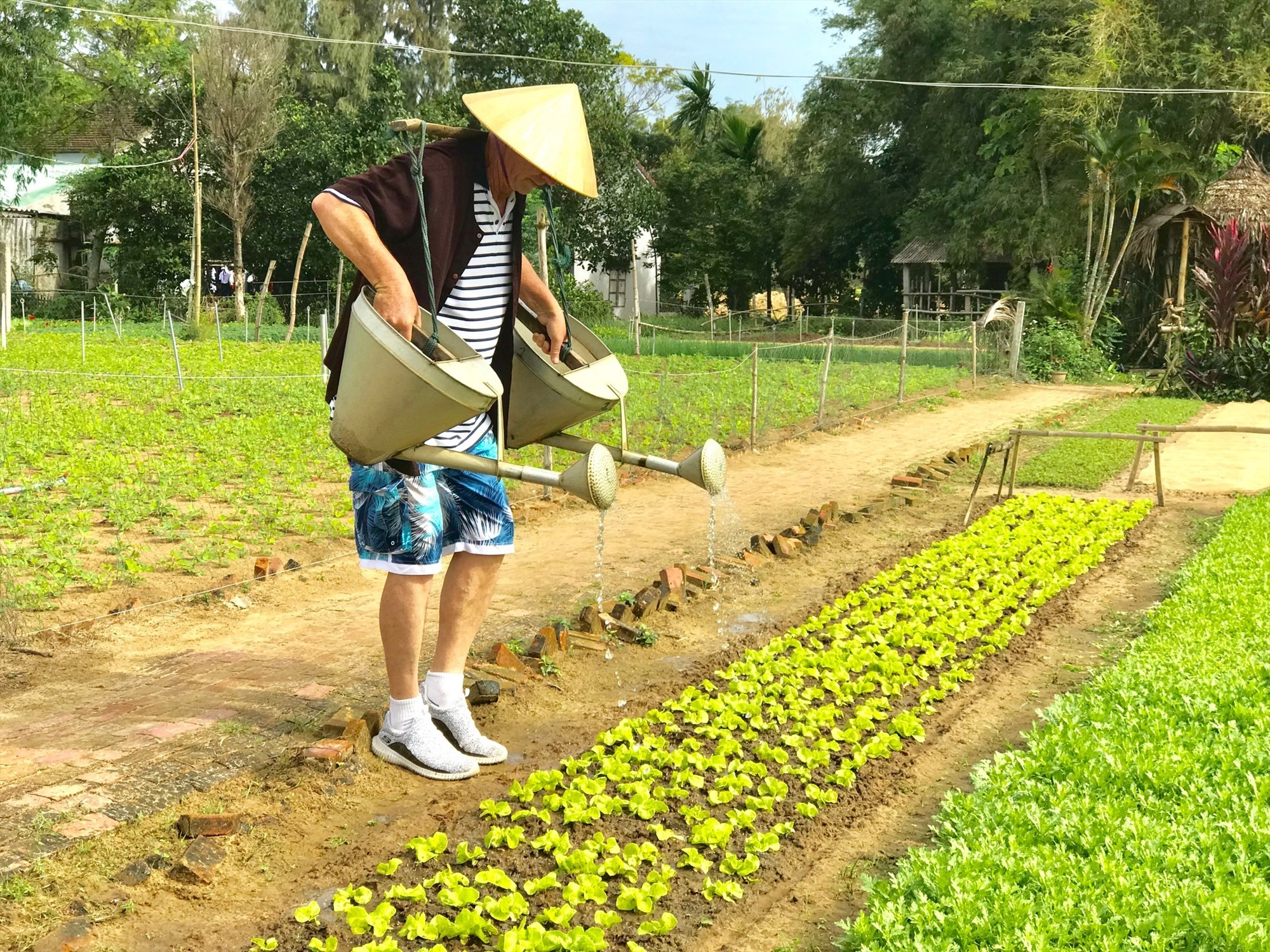 A foreign tourist on a farm in Quang Nam