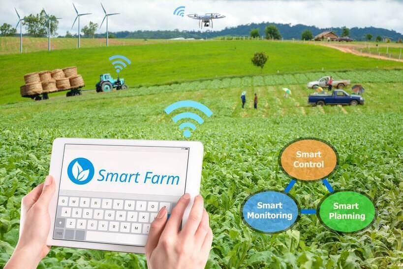 Nông nghiệp thông minh được kỳ vọng sẽ thu hút giới trẻ tham gia sản xuất. Ảnh: agroberichtenbuitenland
