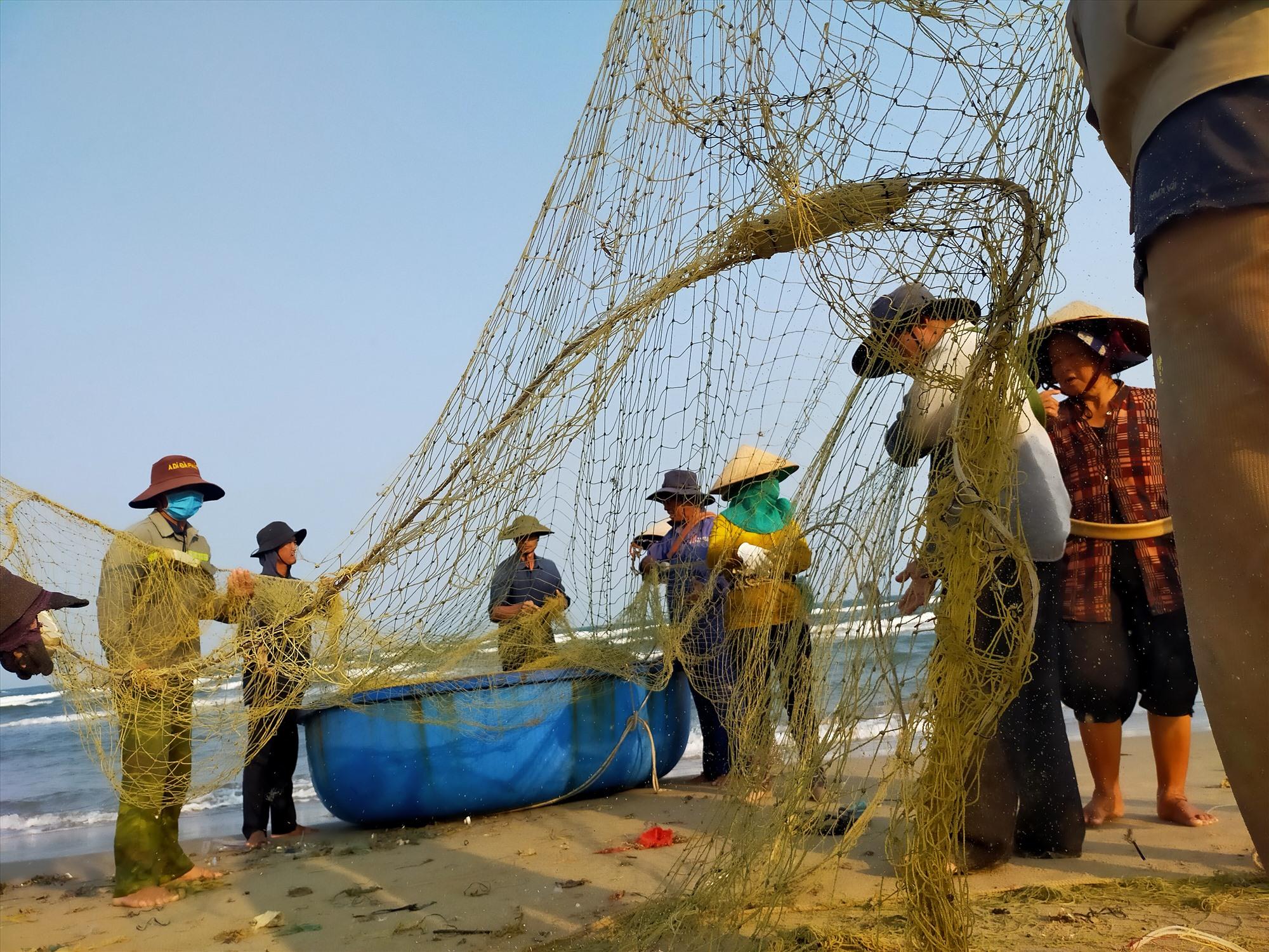 Kéo rùng là nghề truyền thống ở xã bãi ngang Duy Hải. Ảnh: TUẤN CHÂU