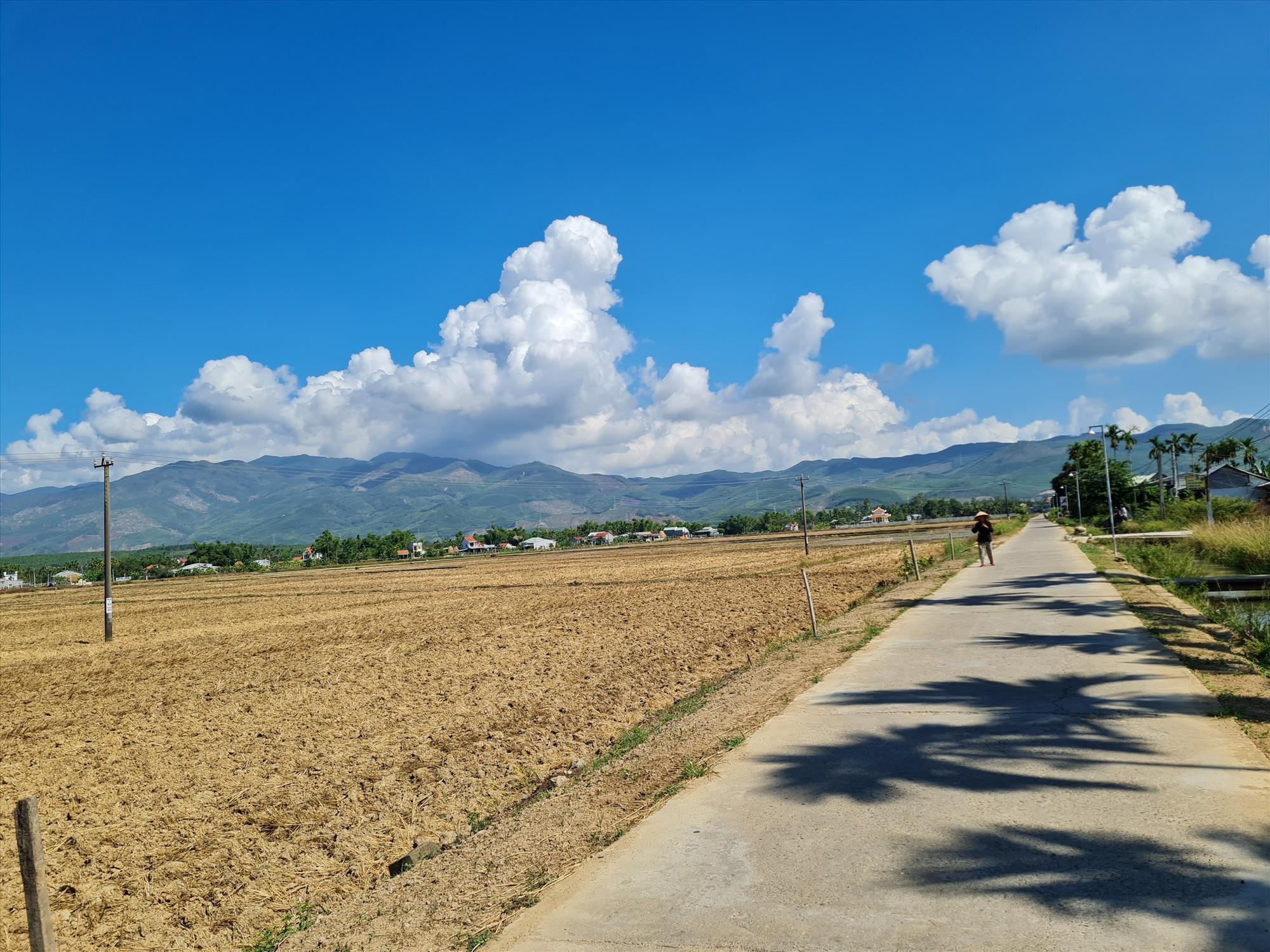 Nhiều địa phương tại Đại Lộc đã hoàn thành xong khâu làm đất chờ bố trí gieo sạ. Ảnh: H.LIÊN