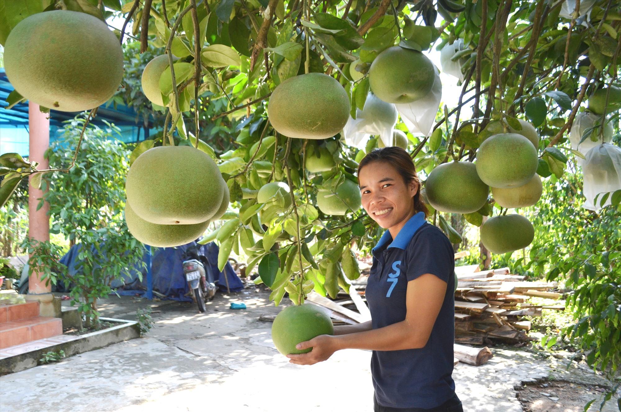 Đông Giang sẽ khuyến khích người dân trồng những loại cây ăn quả phù hợp với thực tế địa phương. Ảnh: C.T