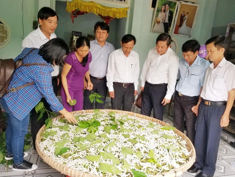 Hướng dẫn người dân thực hiện mô hình trồng dâu nuôi tằm bằng những giống mới cho năng suất cao. Ảnh: L.Đ