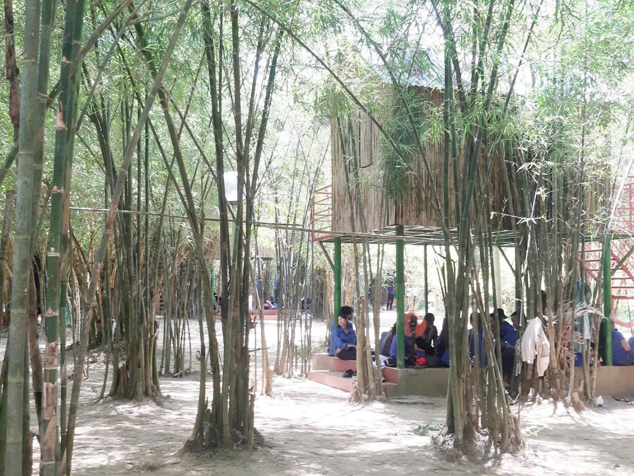 Không gian của Vườn Trúc trên đỉnh Bồ Bồ (Điện Tiến, Điện Bàn). Ảnh: HOÀNG LIÊN