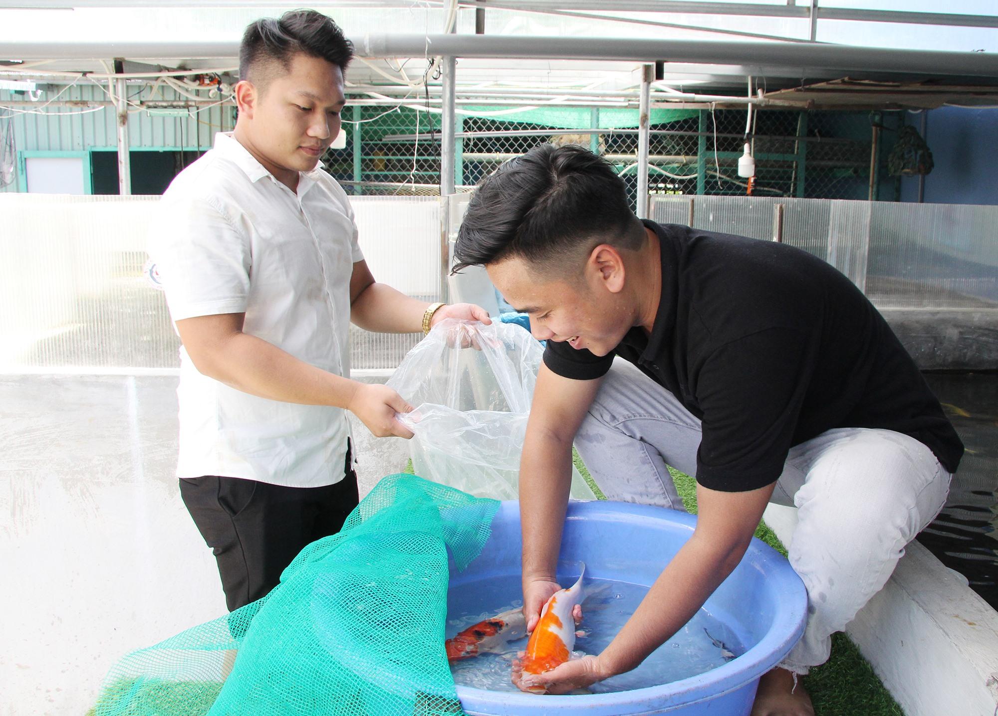 Anh Thịnh đang bắt cá cho khách hàng. Ảnh: H.Q