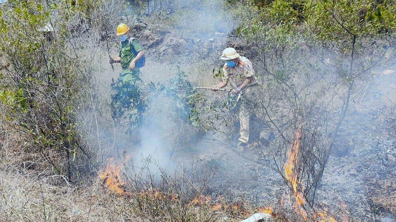 Lực lượng chức năng tham gia dập lửa trong vụ cháy rừng ở xã Bình Nam (Thăng Bình). Ảnh: T.H.