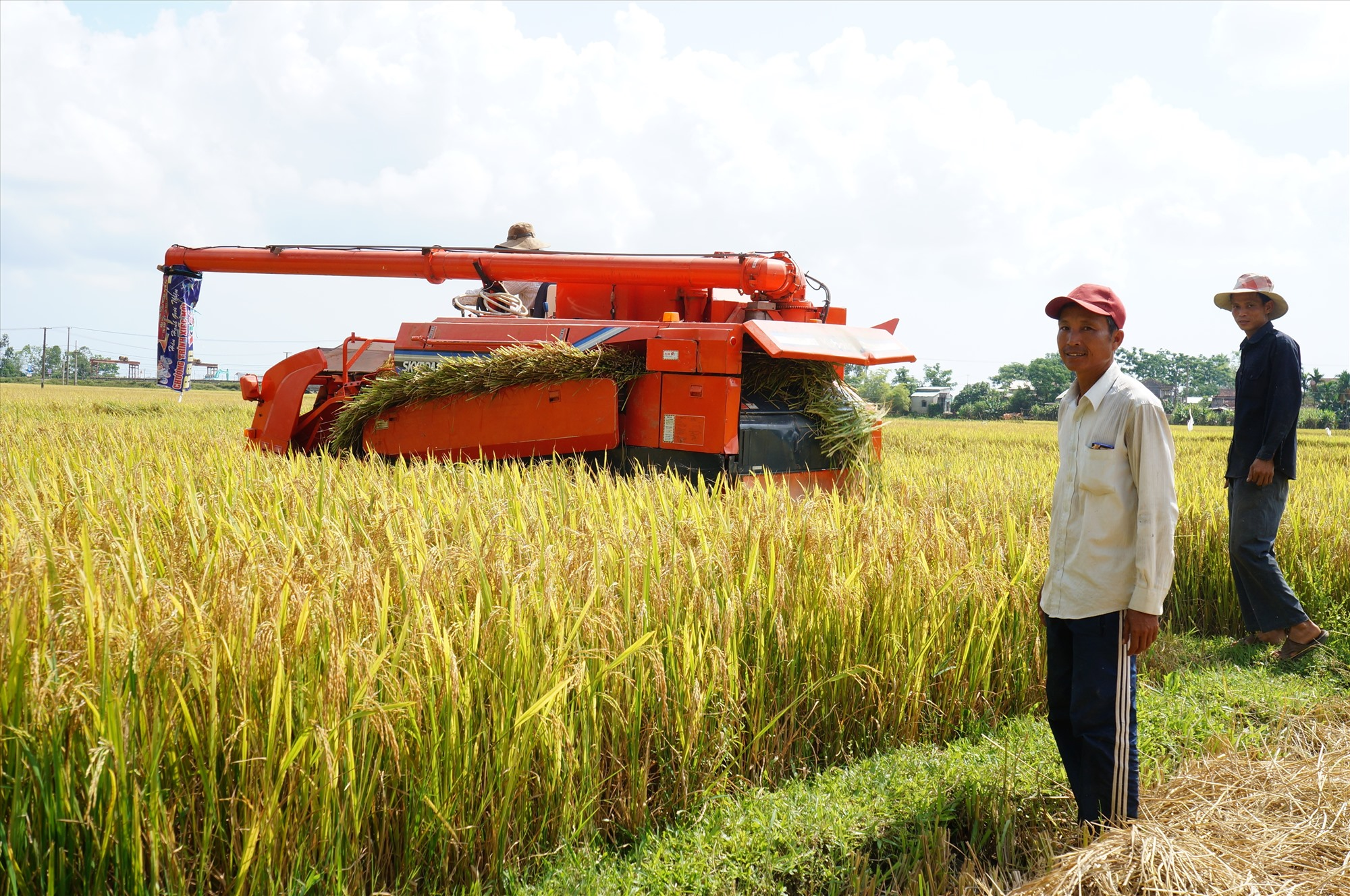 HTX không dễ tiếp cận vốn vay của Nghị định 116 thay thế Nghị định 55 để đầu tư cho hạ tầng nói riêng, phát triển nông nghiệp hàng hóa nói chung. Ảnh: VIỆT QUANG