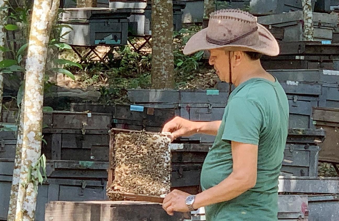 Hình ông Hà với trang trại nuôi ong lấy mật.