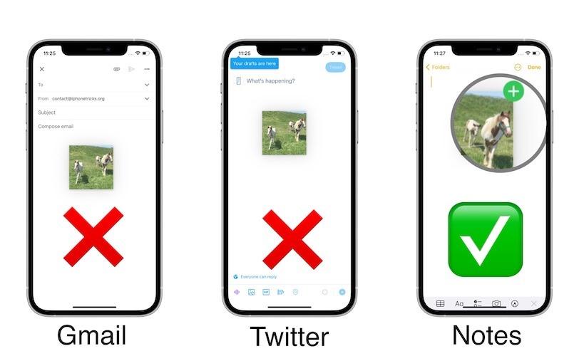 """Nếu không có biểu tượng """"+"""" màu xanh lá ở góc trên bên phải nghĩa là tệp sẽ không được ứng dụng đích chấp nhận. Ảnh: iphonetricks.org"""