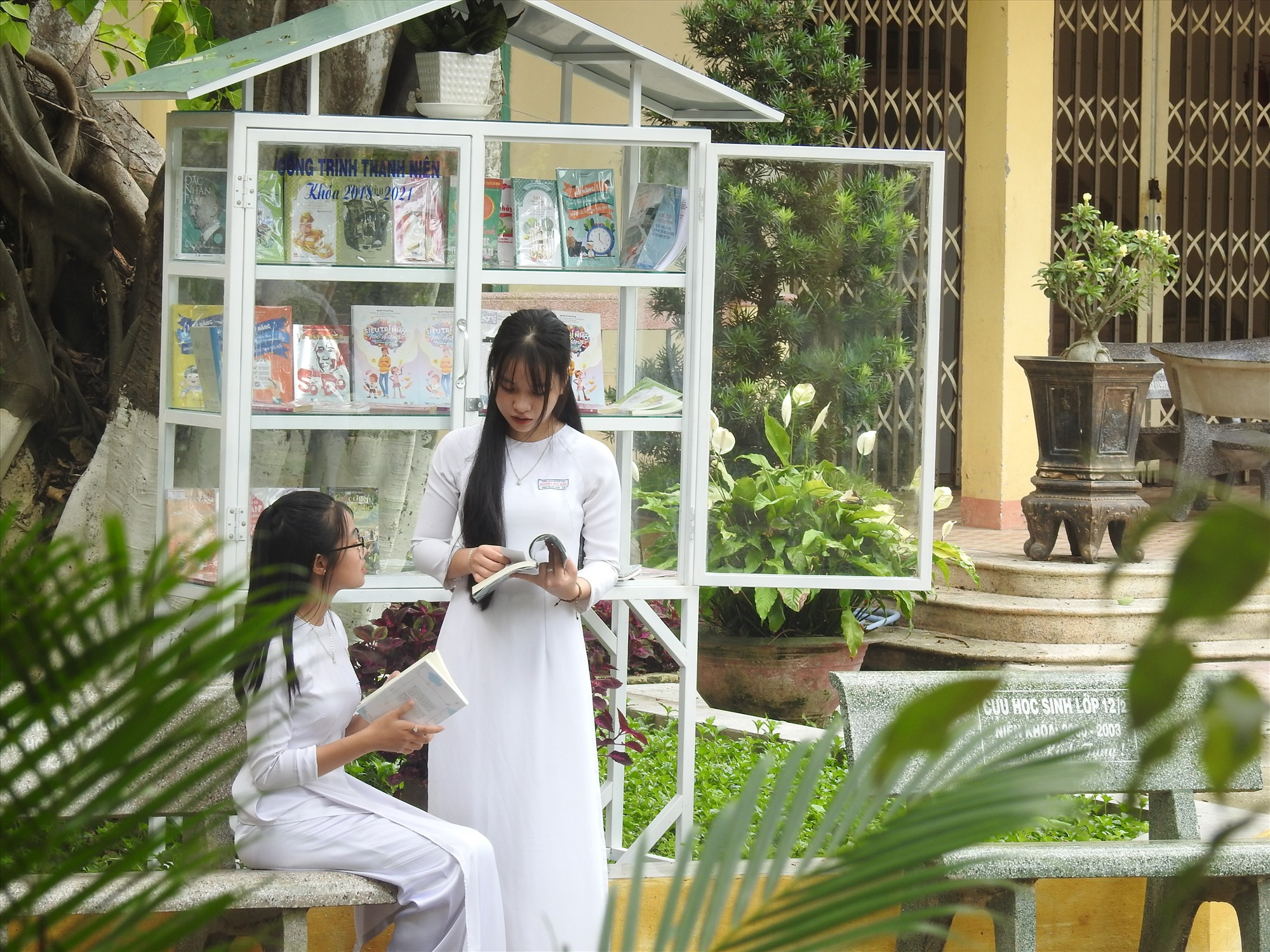 """Học sinh Trường THPT Nguyễn Duy Hiệu rất vui khi có """"cây sách"""" sân trường. Ảnh: K.V"""