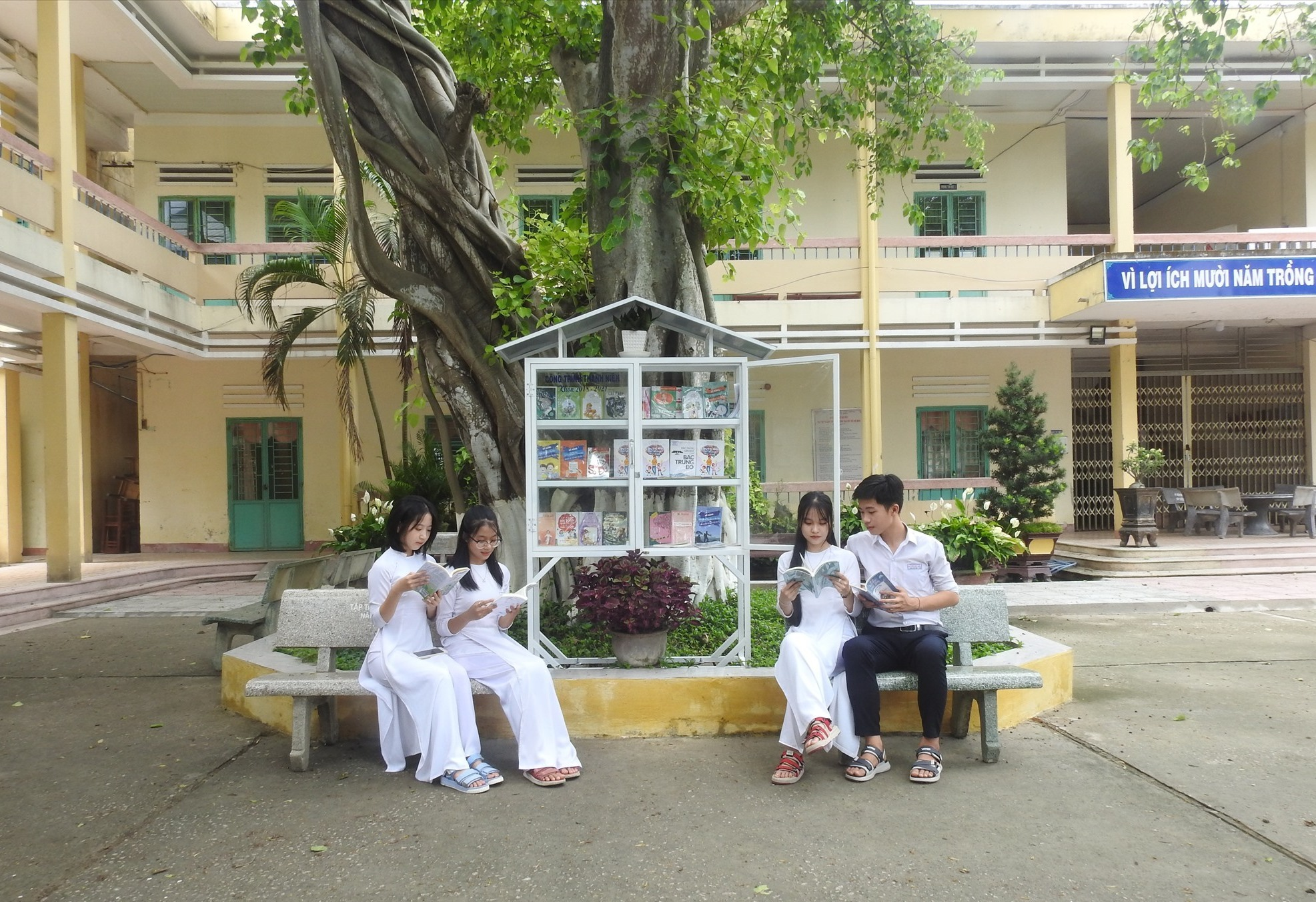 """Học sinh Trường THPT Nguyễn Duy Hiệu đọc sách bên """"cây sách"""" sân trường. Ảnh: K.V"""