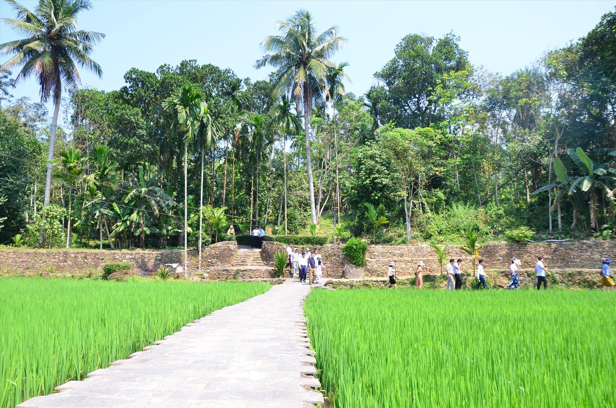 Một góc nông thôn Tiên Phước hôm nay. Ảnh: HOÀNG HƯNG