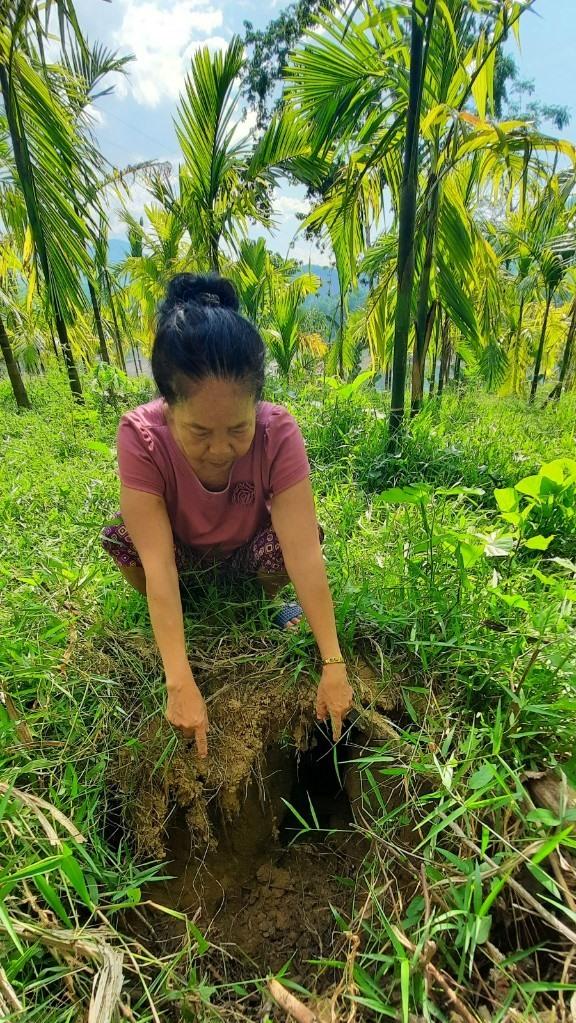 Gần căn nhà gia đình bà Hồng xuất hiện nhiều hố sâu do bị sụt lún bờ sông tạo thành. Ảnh PHƯƠNG LOAN
