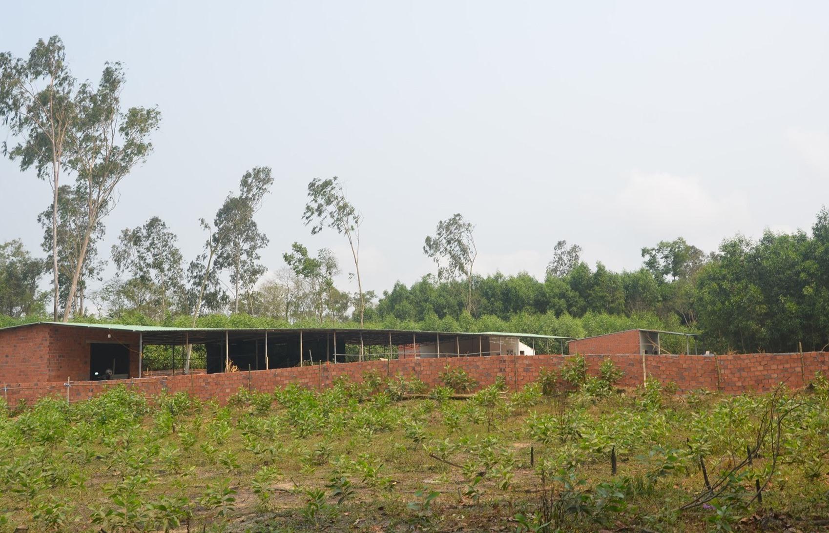 Nhiều dự án chậm tiến độ giải phóng mặt bằng do vướng mắc chính sách bồi thường. TRONG ẢNH: Khu vực bị thu hồi đất để triển khai dự án xây dựng nông nghiệp tại Tam Anh Nam (Núi Thành). Ảnh: H.P