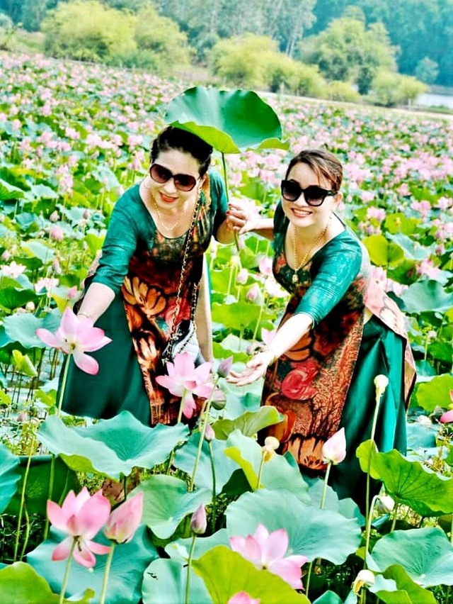 All visitors going there want to take photos with blooming lotuses.