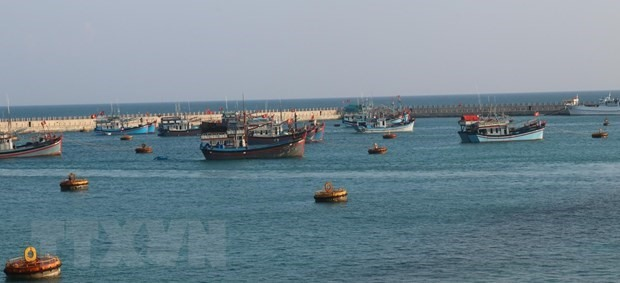 Dozens of fishing vessels dock in the shelter area of Vietnam's Da Tay A Reef (Photo: VNA)