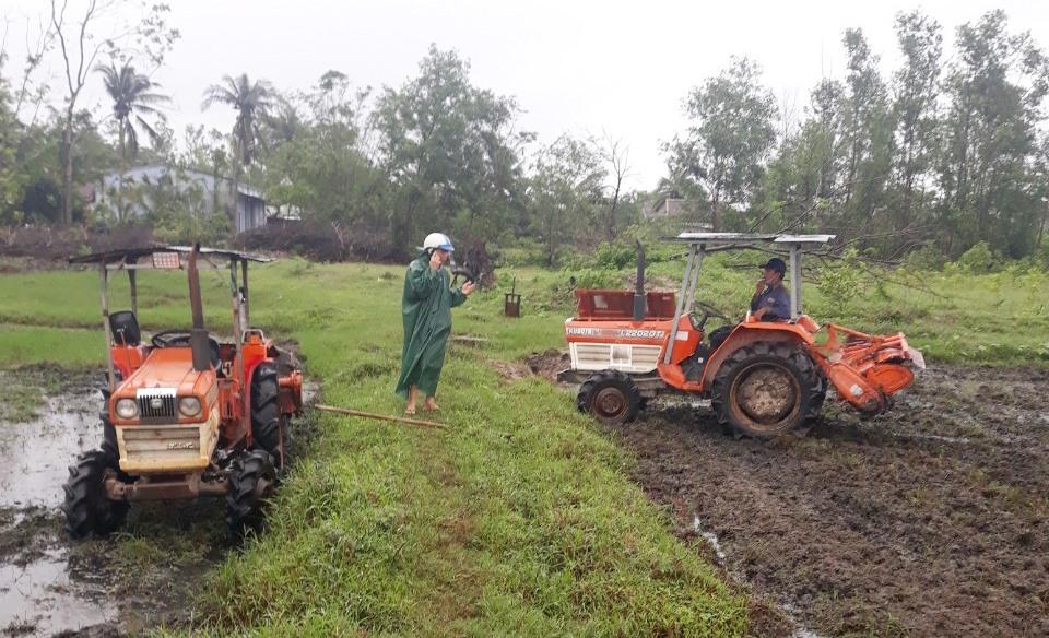 Từ sự quyết tâm của Chi bộ thôn Tịch Tây và hưởng ứng của nhân dân, cánh đồng Sang được cải tạo, trả lại màu xanh. Ảnh: VĂN VINH