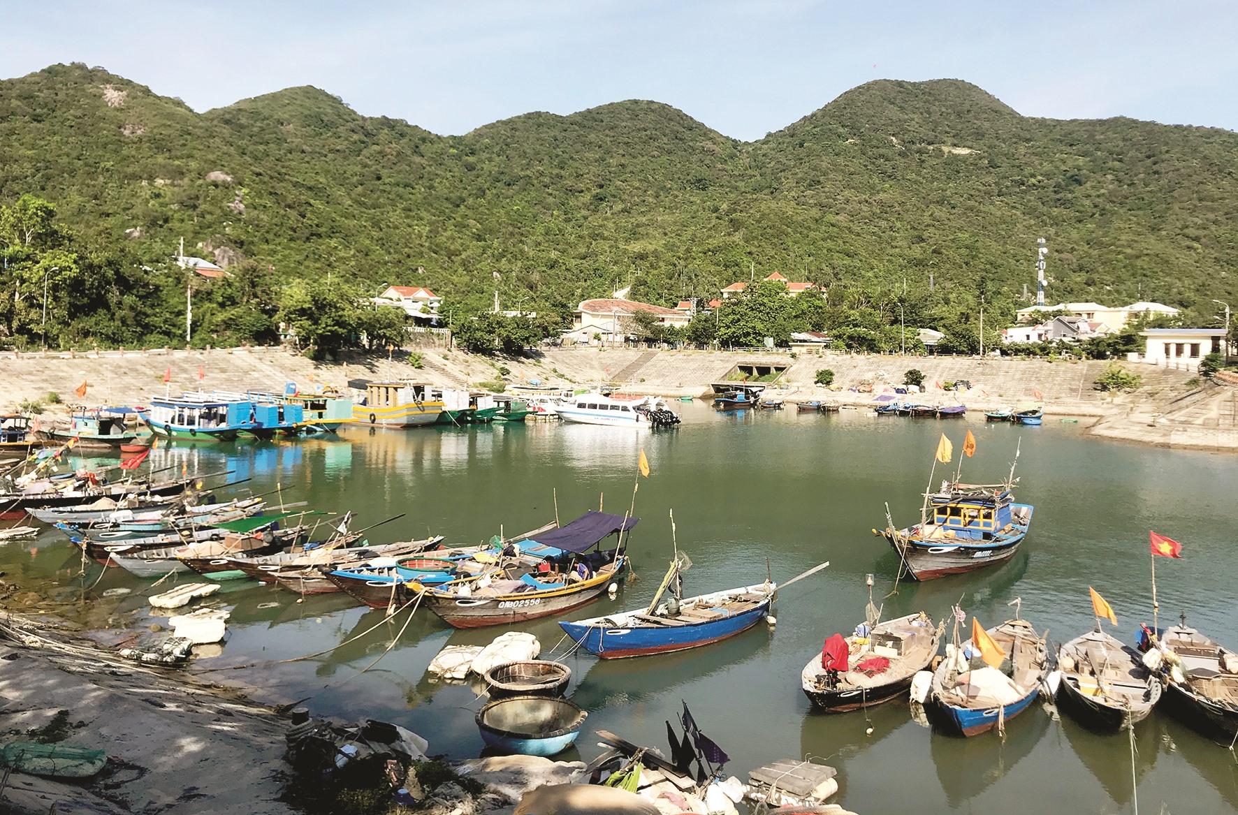 Những chiếc thuyền ở Cù Lao Chàm tuy nhỏ nhưng chạy câu cá ngừ rất hiệu quả.
