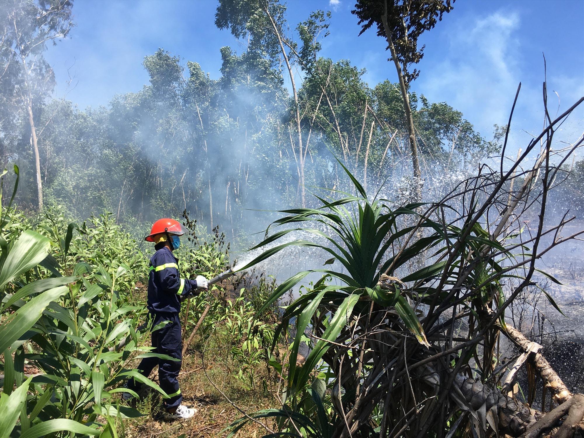 Lực lượng cảnh sát PCCC tiến hành dập lửa. Ảnh: H.C