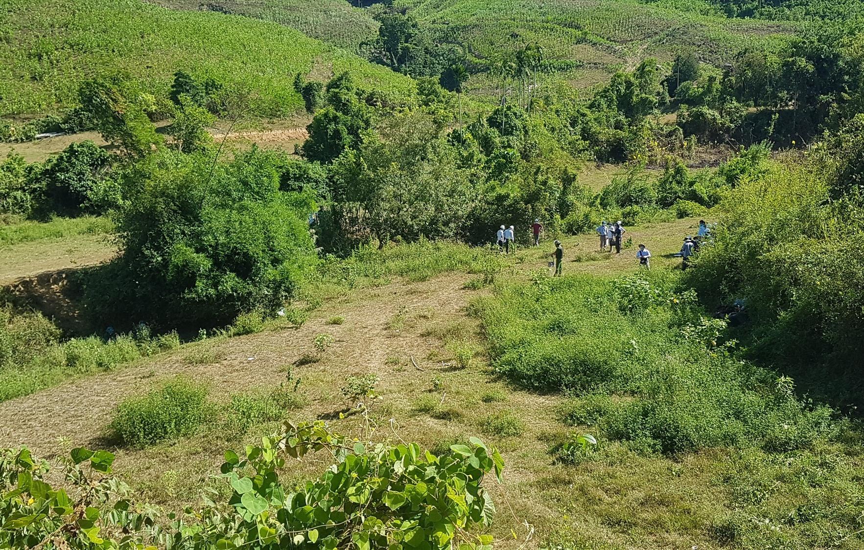 Một phần diện tích đất bị cưỡng chế thu hồi của 4 hộ dân xã Tiên Lãnh. Ảnh: L.D