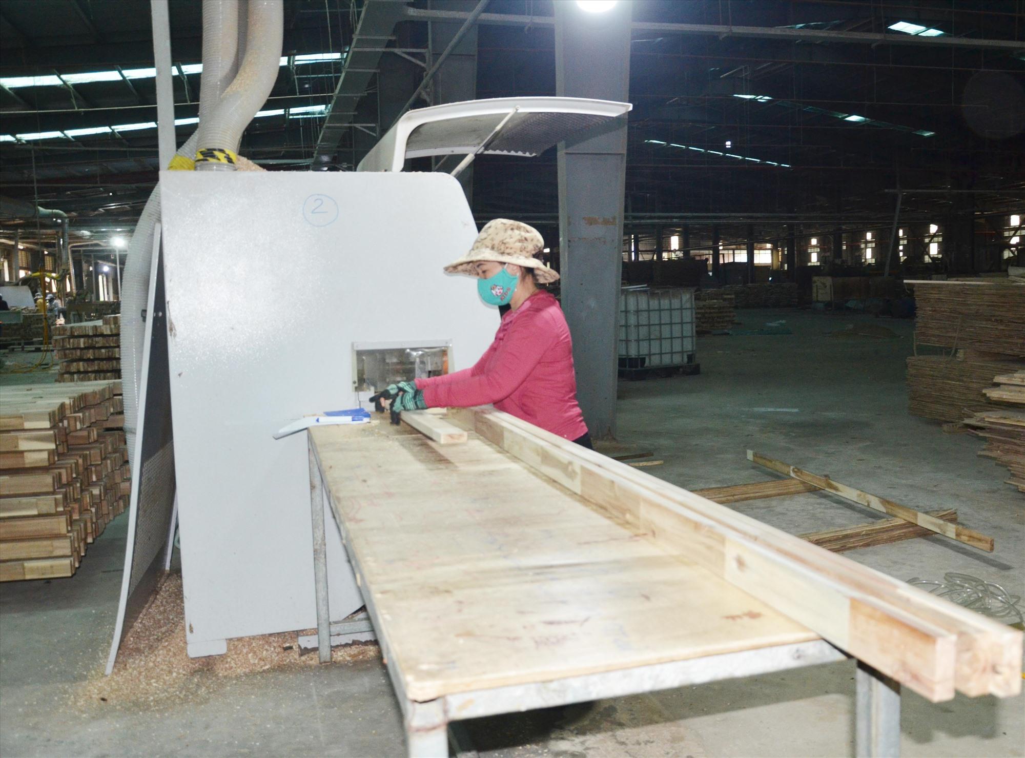 Doanh nghiệp chế biến sản phẩm từ nguồn nguyên liệu rừng trồng. Ảnh: T.H