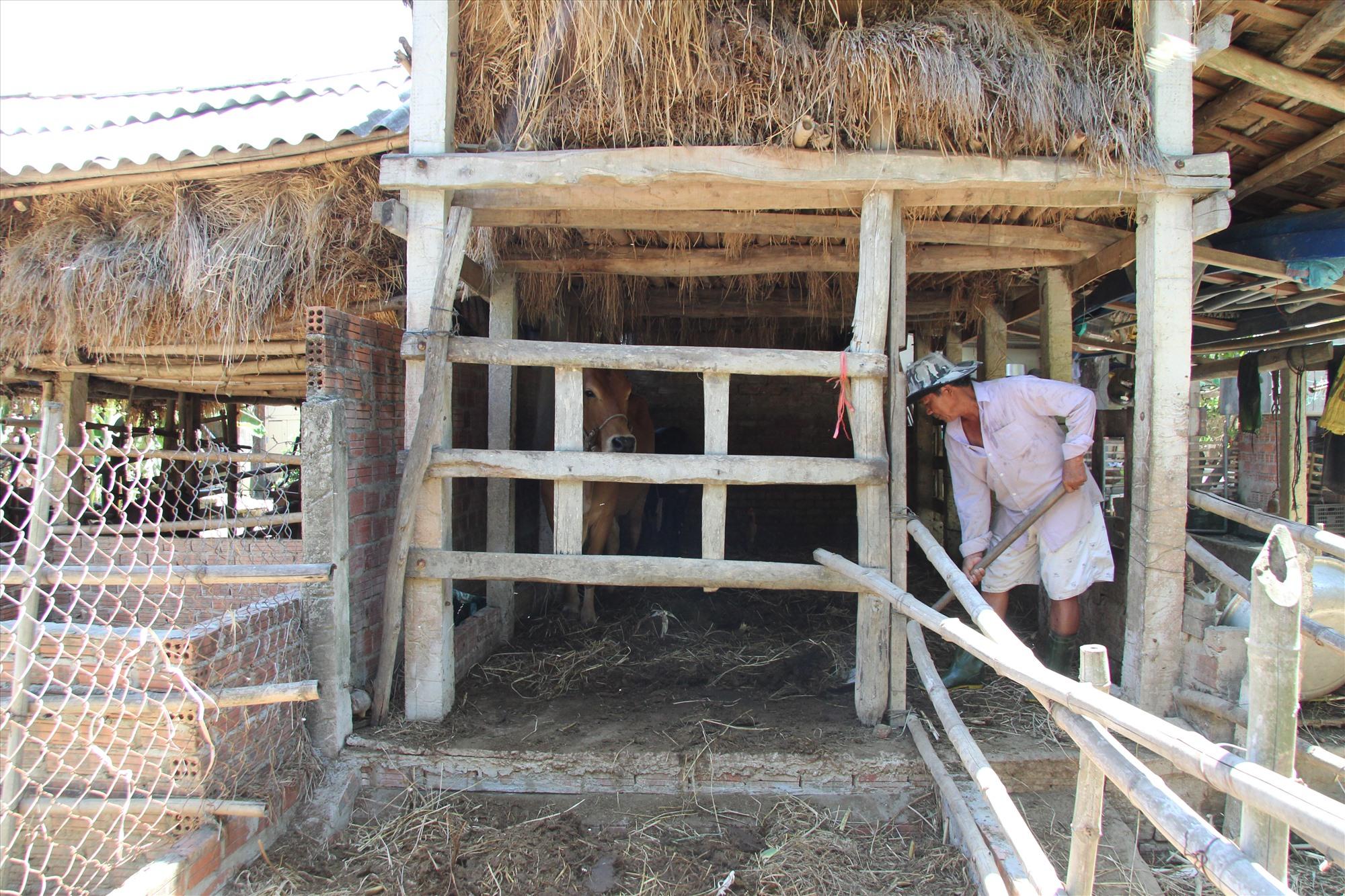 Gia đình ông Ngô Văn Chức đầu tư xây lắp bể bioga để đảm bảo vệ sinh trong chăn nuôi. Ảnh: H.Q