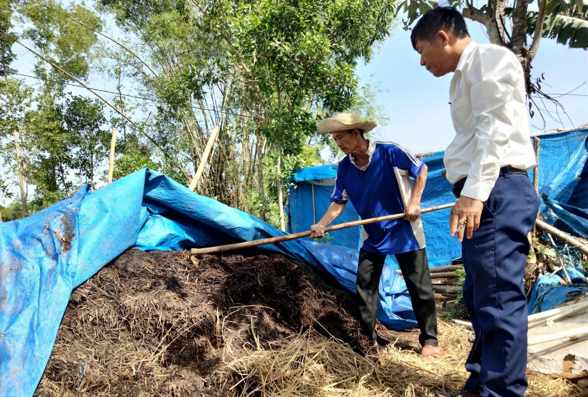Từ phế thải nấm rơm, Hội Nông dân xã Bình Trị và Ban Nông nghiệp xã đã làm thử nghiệm phân vi sinh hữu cơ tại Lê Văn Lan (thôn Việt Sơn).