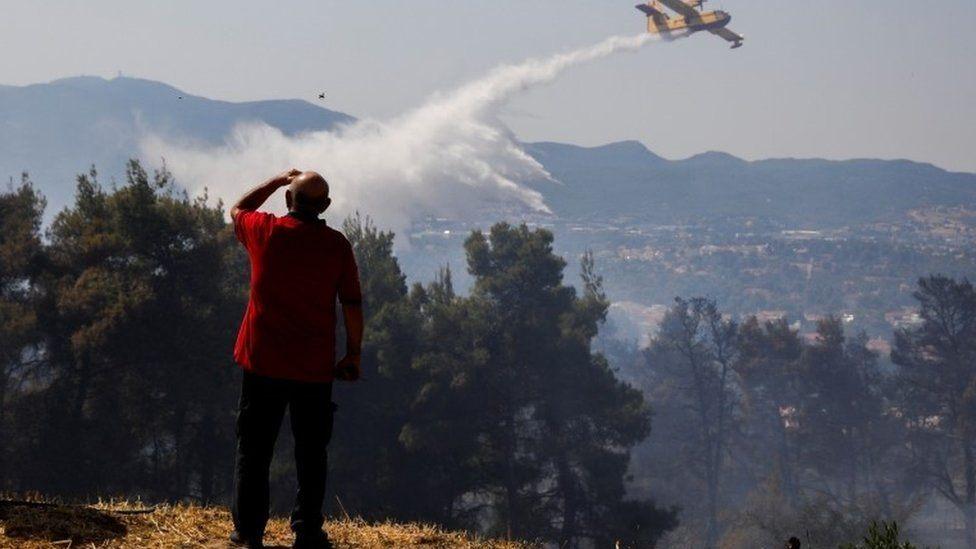 Dùng máy bay chở nước dập dắt đám cháy rừng tại Hy Lạp. Ảnh: AFP