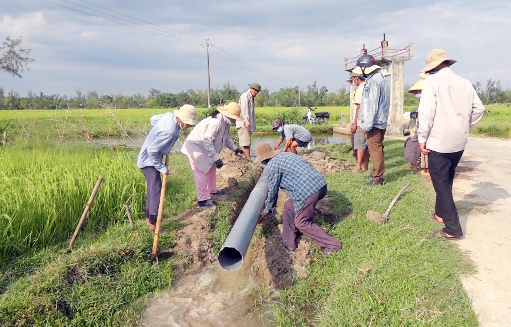 Lắp đặt ống nhựa tại đập Suối Mới dẫn nước về chống hạn cho gần 10 lúa ở tổ 19, thôn Phước Cẩm. Ảnh: M.T