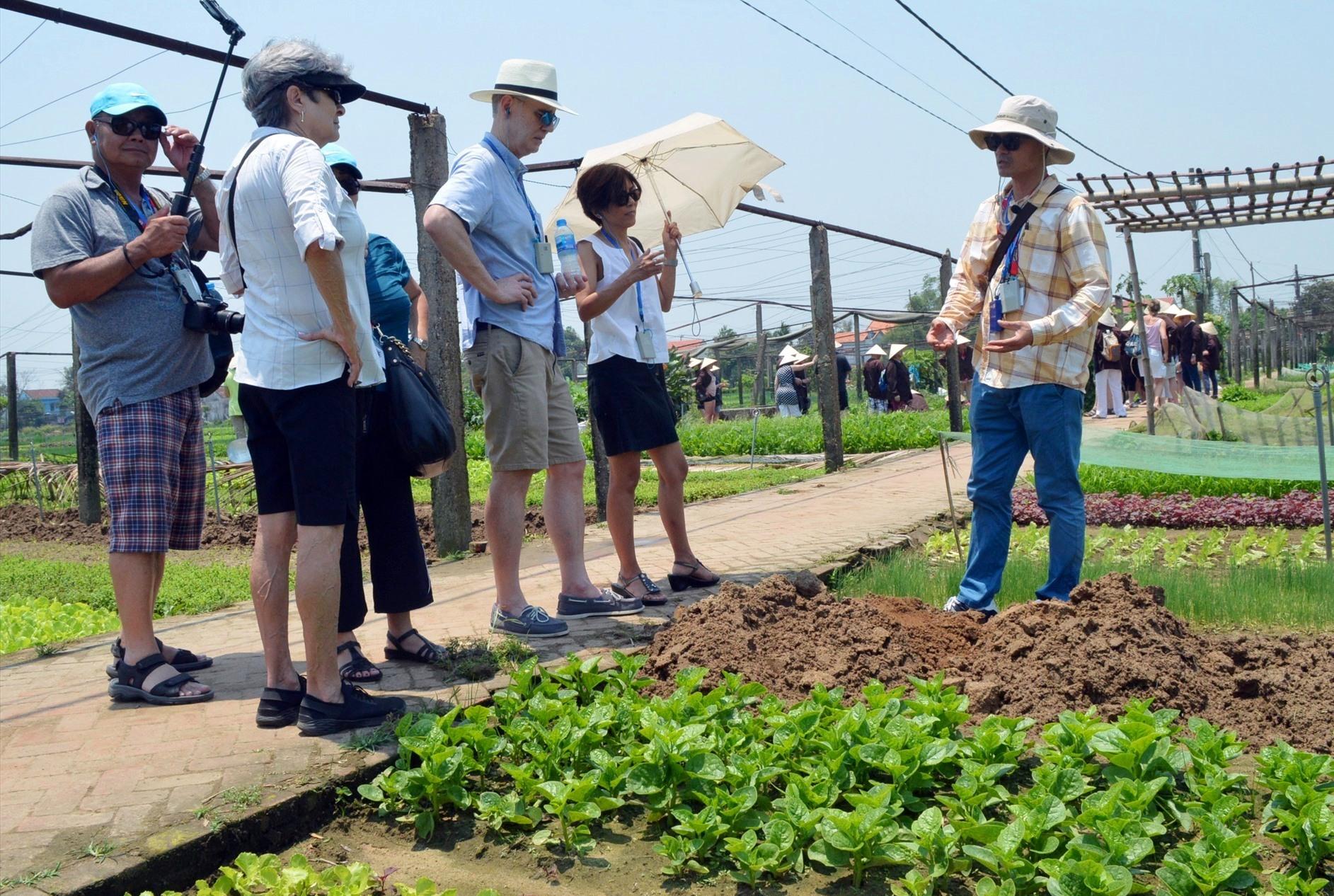 Quảng Nam sẽ phát triển du lịch xanh trong những năm đến
