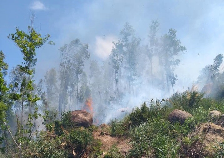 Một vụ cháy rừng keo xảy ra trên địa bàn thị trấn Đông Phú vào cuối tháng 7.2021.