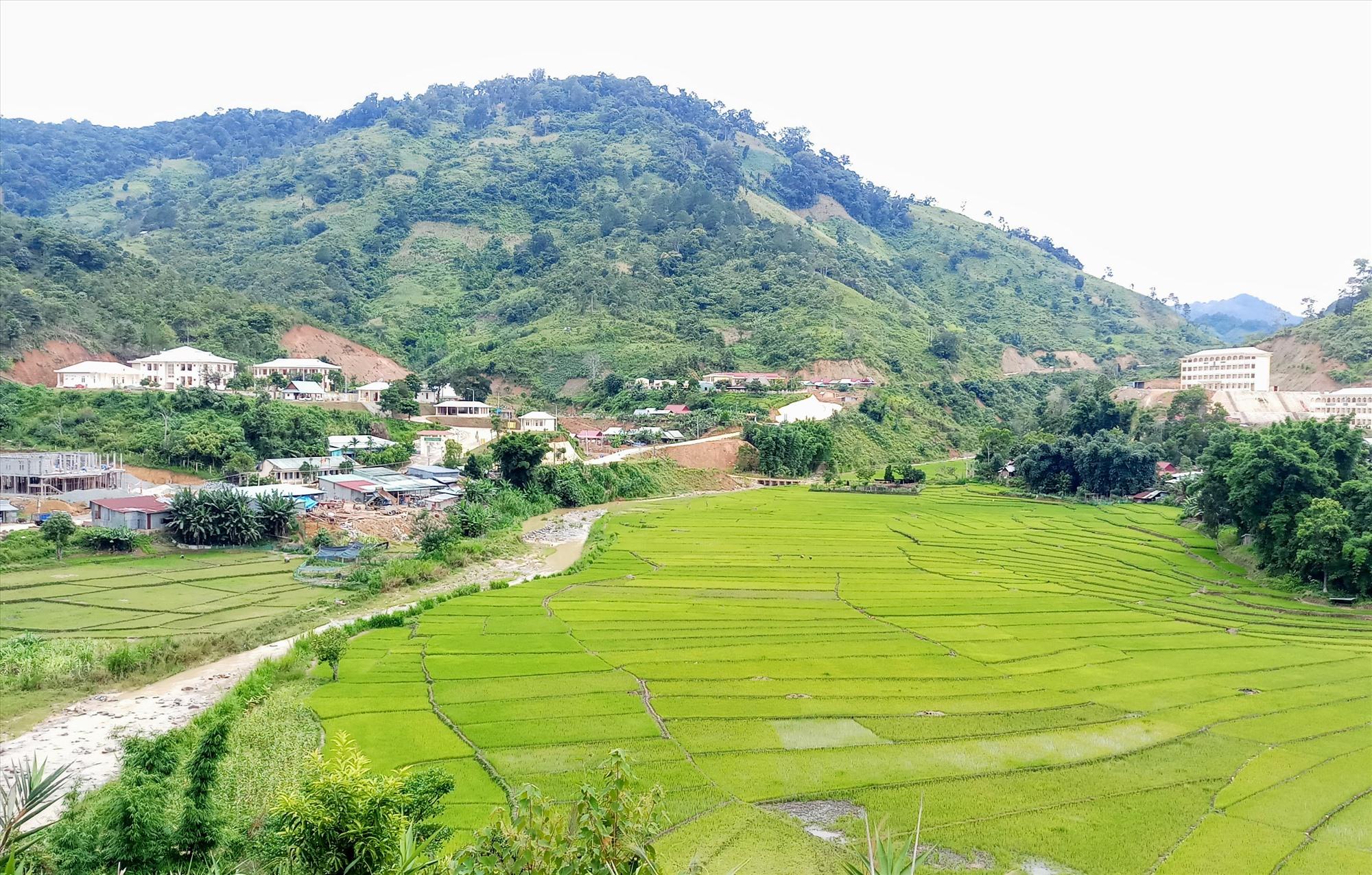 Từ nguồn vốn đầu tư xây dựng cơ bản hơn 187 tỷ đồng, Tây Giang phân bổ triển khai thực hiện 150 dự án công trình phát triển kinh tế - xã hội. Ảnh: A.N