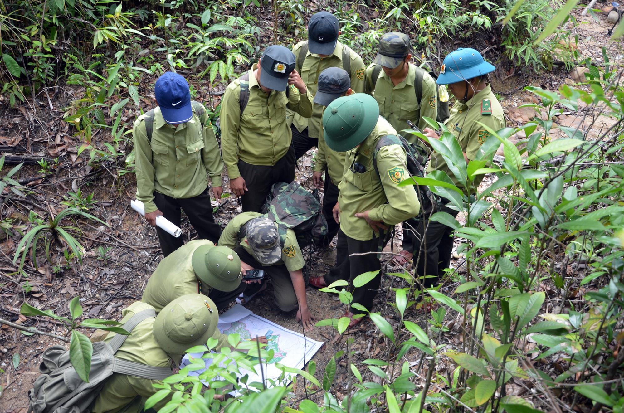Lực lượng bảo vệ rừng chuyên trách tuần tra rừng trong lâm phận Khu bảo tồn loài và sinh cảnh Voi Nông Sơn. Ảnh: H.P